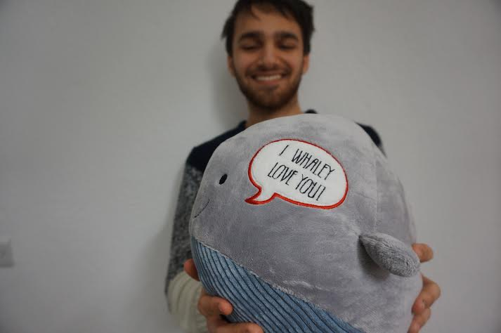 I don't agree. Look, this whale gushes sentiment!