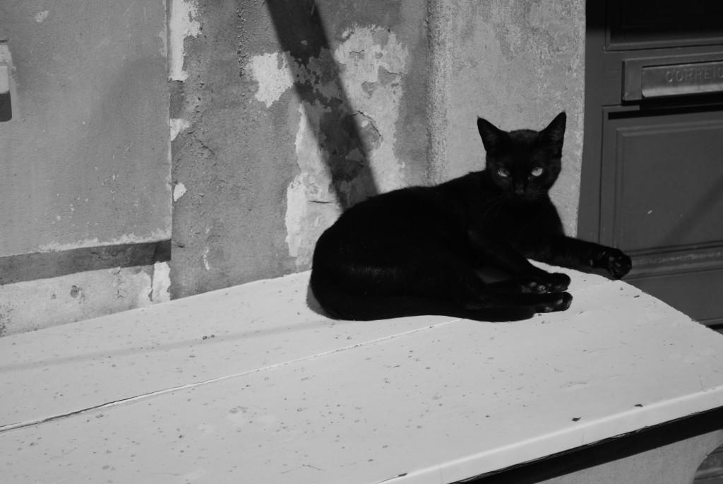 Black, naturally
