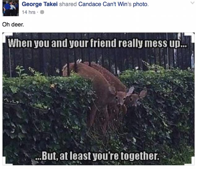 Oh deer Takei