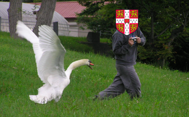 Thankfully these fowl attacks will soon be prevented