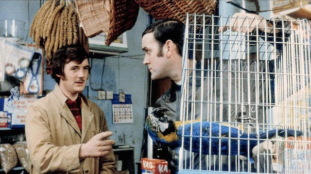 For those unfamiliar with Monty Python, that parrot is indeed very dead