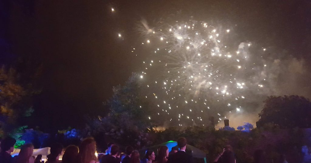 Image may contain: Person, Human, Crowd, Water, Sea Life, Aquarium, Animal, Music, Leisure Activities, Outdoors, Night, Fireworks