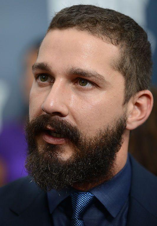 Image may contain: Beard, Person, People, Human