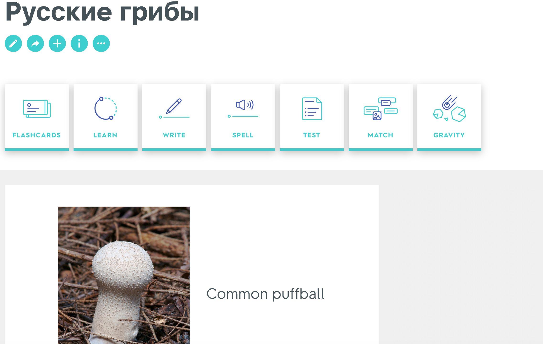 Image may contain: Word, Text, Calendar, Plant, Mushroom, Fungus, Flora, Amanita, Agaric, Pill, Medication