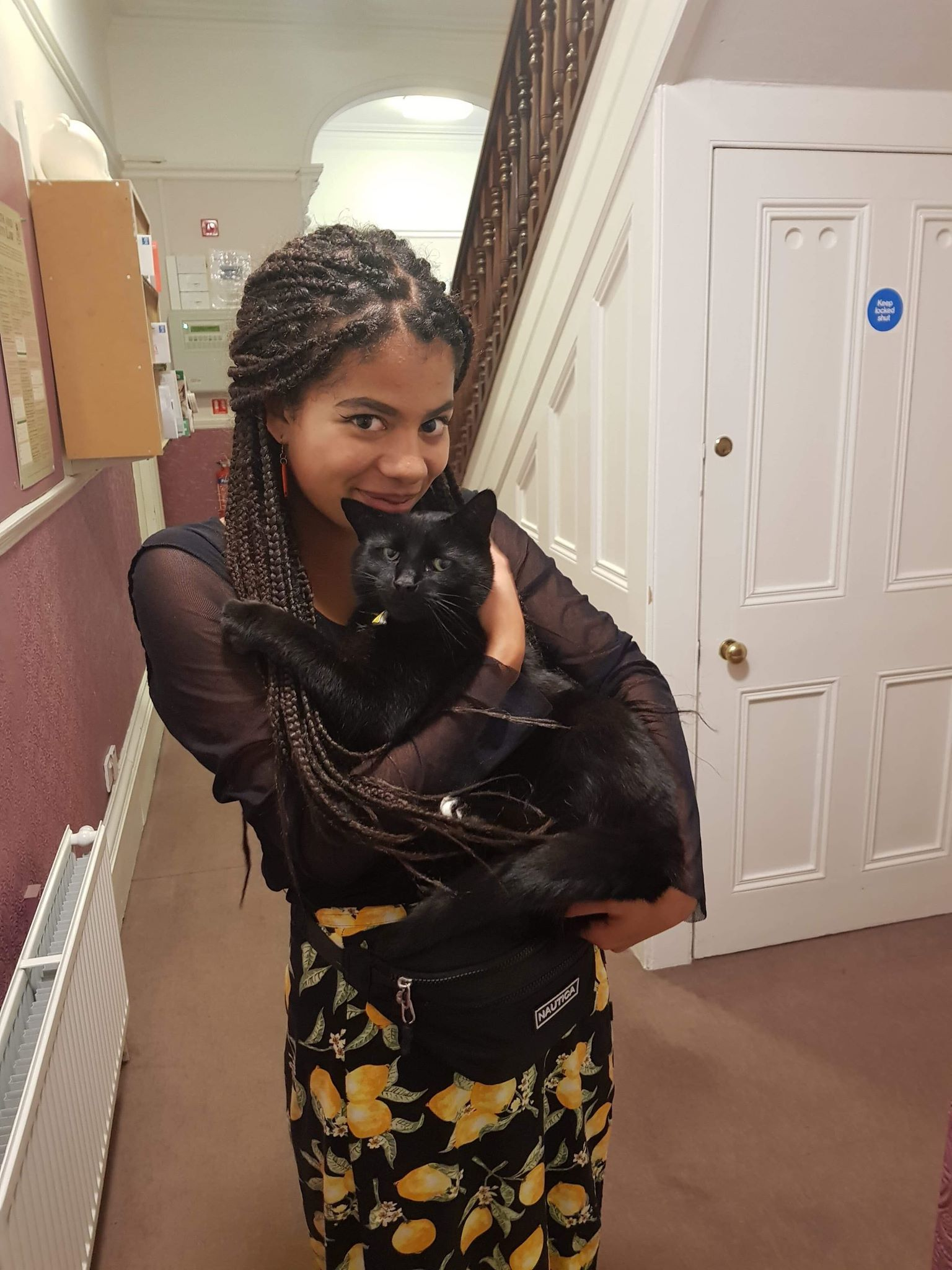 Image may contain: Black Cat, Hardwood, Cat, Mammal, Animal, Pet, Wood, Human, Person, Clothing, Apparel, Banister, Handrail