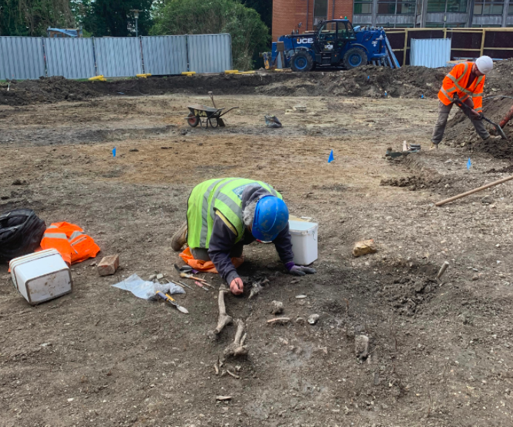 Archeologists dig around a skeleton