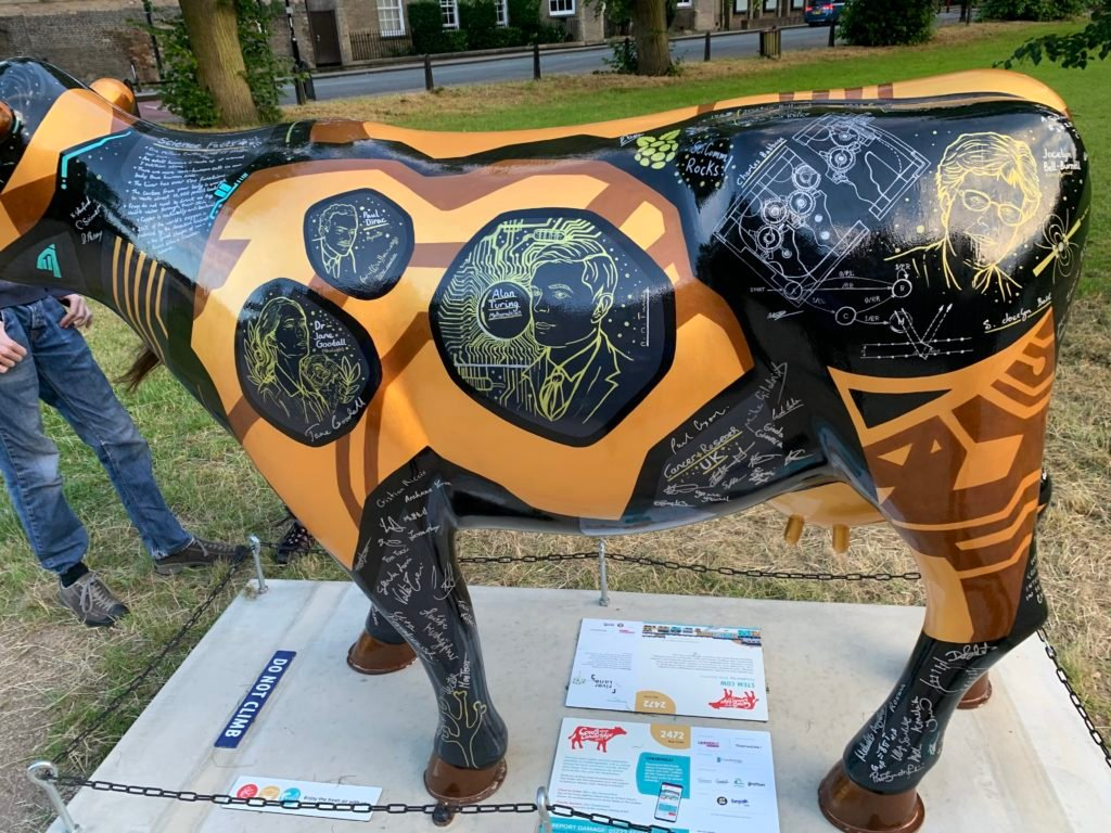 Black and gold cow covered in science facts