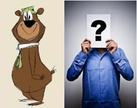 Yogi Bear seems to be running our nightlife!