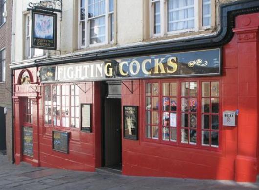 fighting cocks