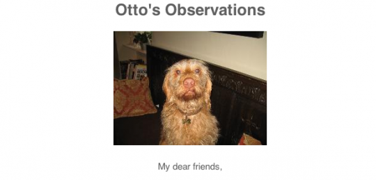 Otto's observations