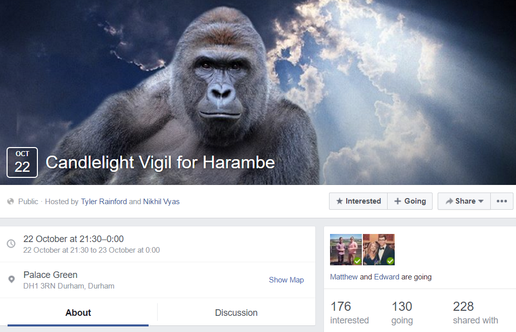 there s going to be a candlelight vigil on palace green in memory of