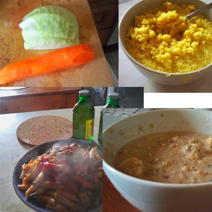 This photo shows a typical day's worth of food for Pat. Pat assures us that the bottom right picture is porridge, and not in fact vomit.