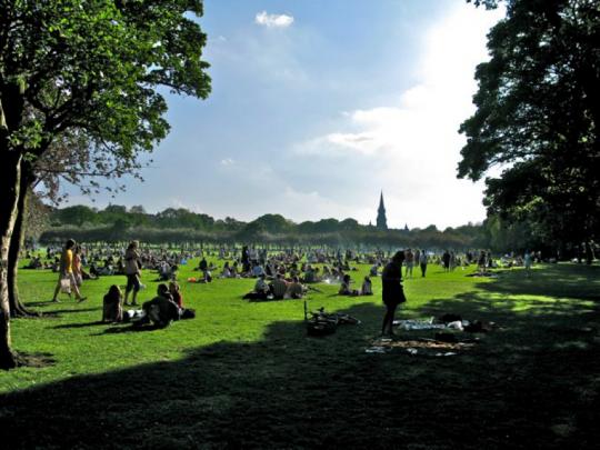 Meadows in the Sun