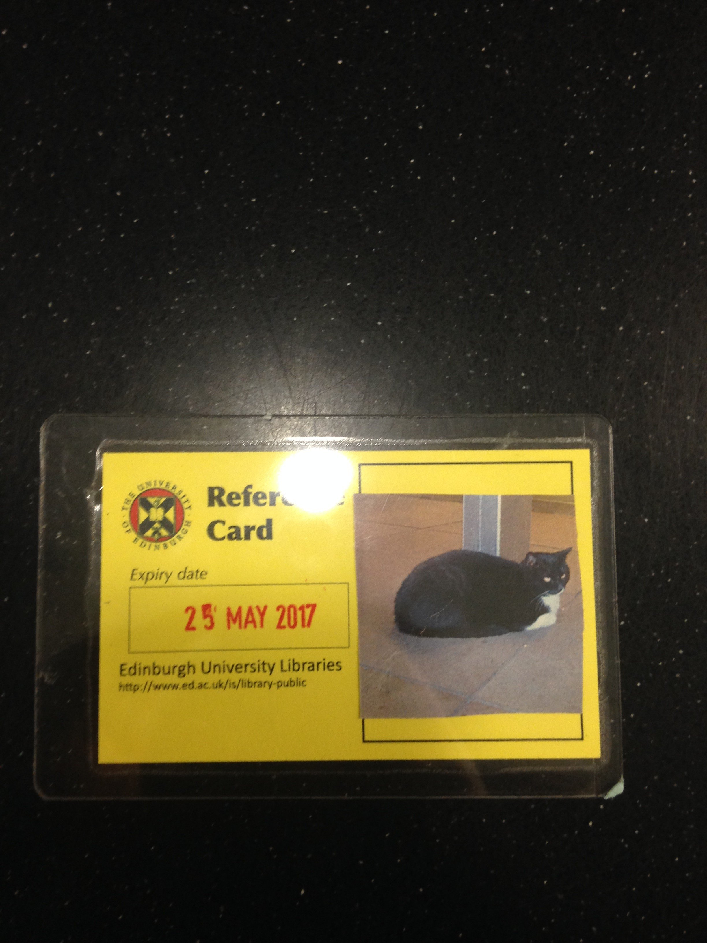 library cats matric card