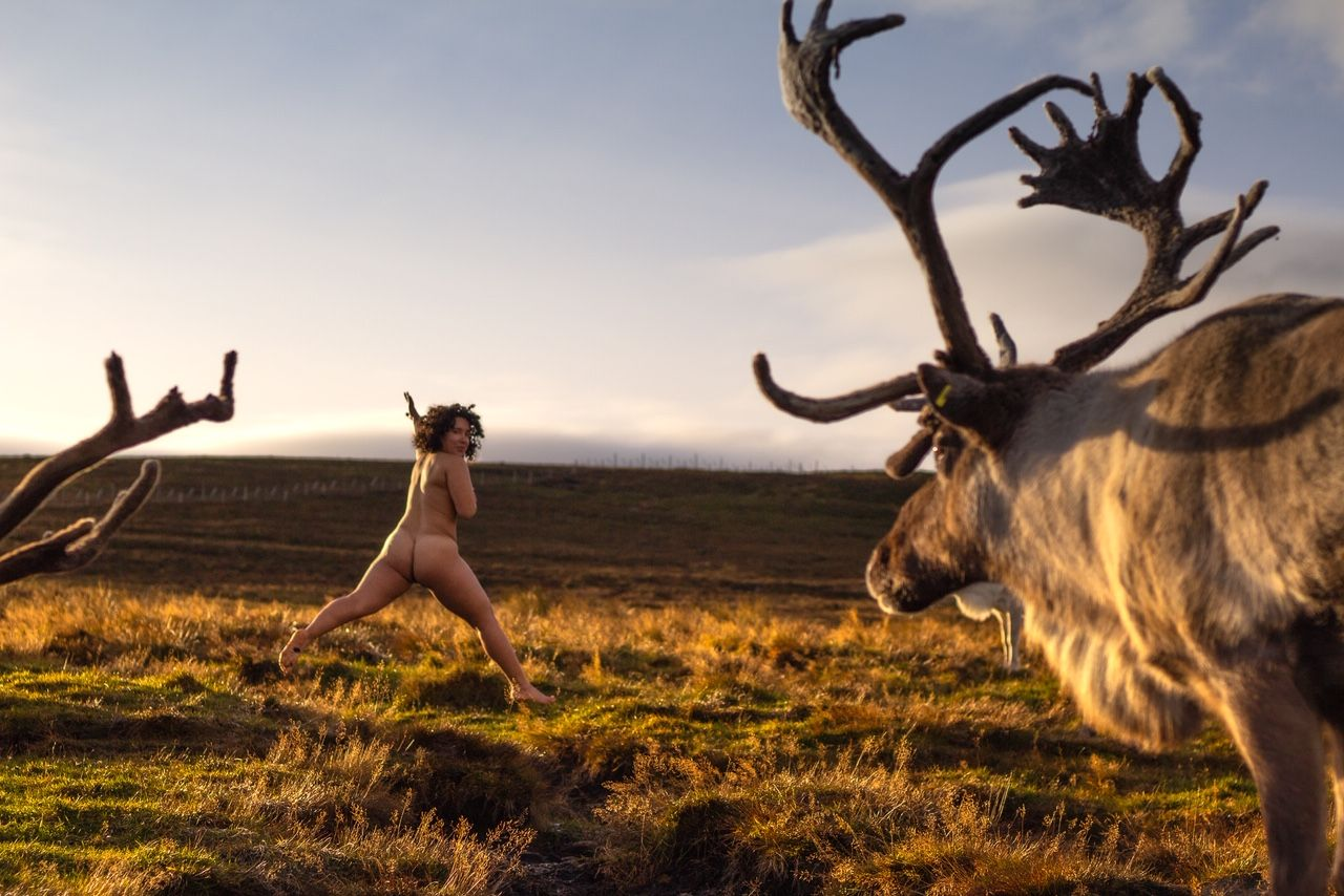 Image may contain: Cattle, Cow, Human, Person, Antelope, Animal, Deer, Mammal, Wildlife, Elk