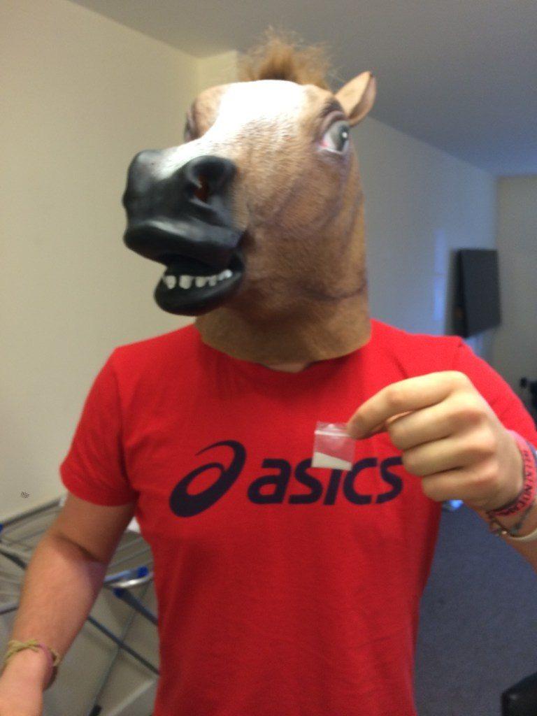 horse-768x1024