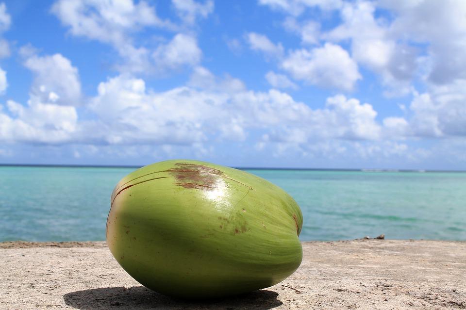 coconut23