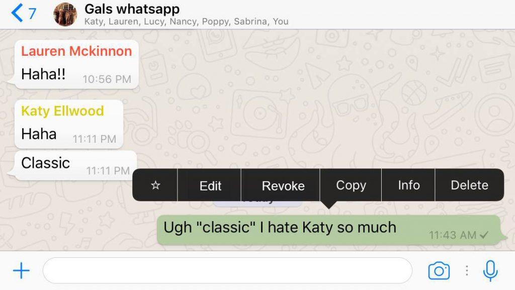 whatsapp-update-delete