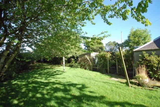 Image may contain: Garden, Backyard, Yard, Outdoors