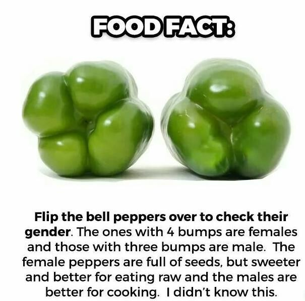 Image may contain: Bell Pepper, Vegetable, Produce, Plant, Pepper, Food, Flora