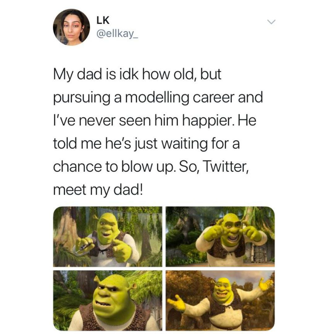 Image may contain: Twitter meet my dad, meme, twitter, dad meme, modelling, meet my dad meme, Potted Plant, Amphibian, Wildlife, Jar, Vase, Pottery, Animal, Plant, Flyer, Advertisement, Poster, Paper, Brochure, Human, Person