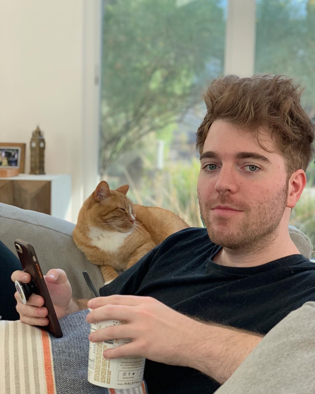 Image may contain: Celebrities who unfollowed James Charles, James Charles, Shane Dawson, YouTuber, unfollow, subscribers,Finger, Furniture, Couch, Mobile Phone, Cell Phone, Phone, Electronics, Abyssinian, Animal, Pet, Cat, Mammal, Human, Person