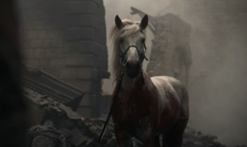 Image may contain: Game of Thrones white horse, game of thrones, Mammal, Horse, Animal
