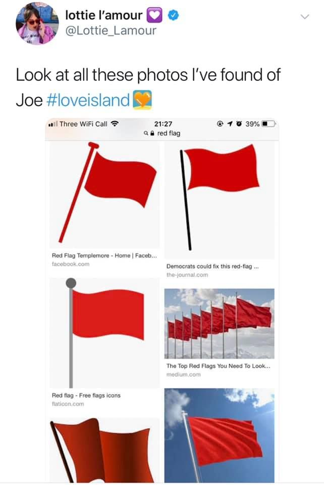Image may contain: Joe from Love Island, Love Island, red flag, meme, Netflix, You, Flag, Plot, Symbol, Text, Person, Human, Word