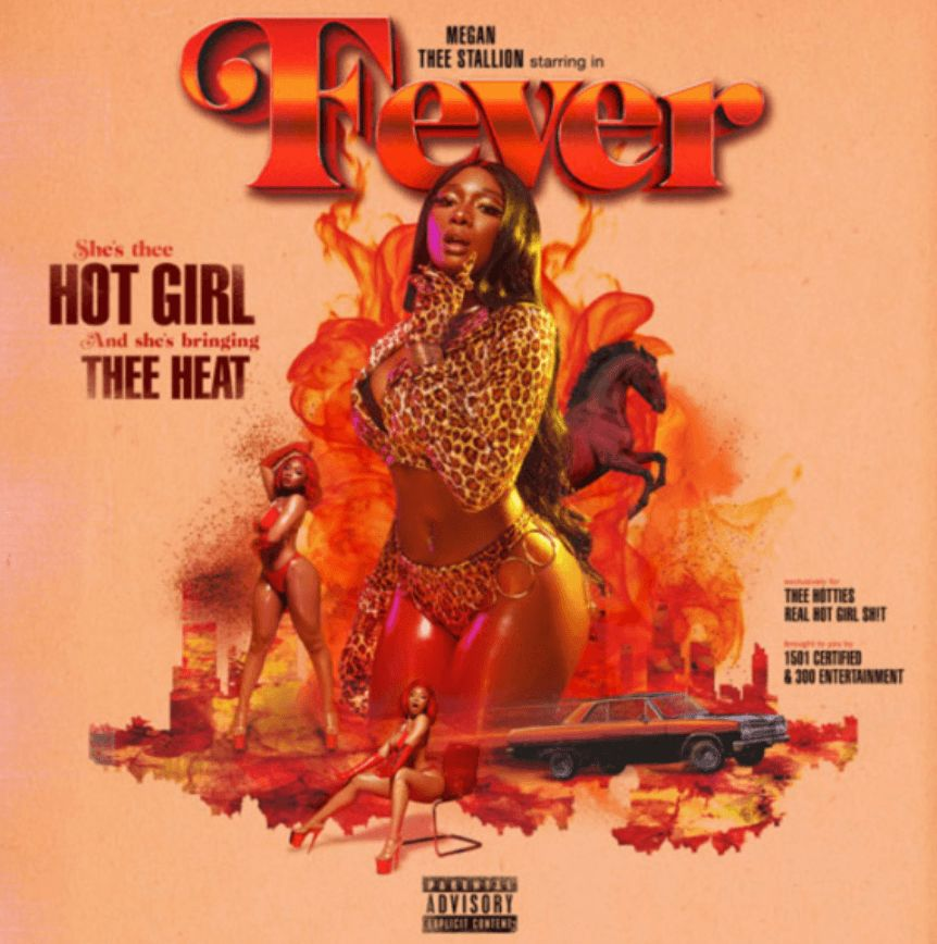 Image may contain: Hot Girl Summer meme, Hot Girl Summer, memes, Megan Thee Stallion, Megan Pete, origin, start, meaning, explained, examples, best, Instagram, Twitter, caption, Leisure Activities, Person, Human, Flyer, Paper, Brochure, Poster, Advertisement