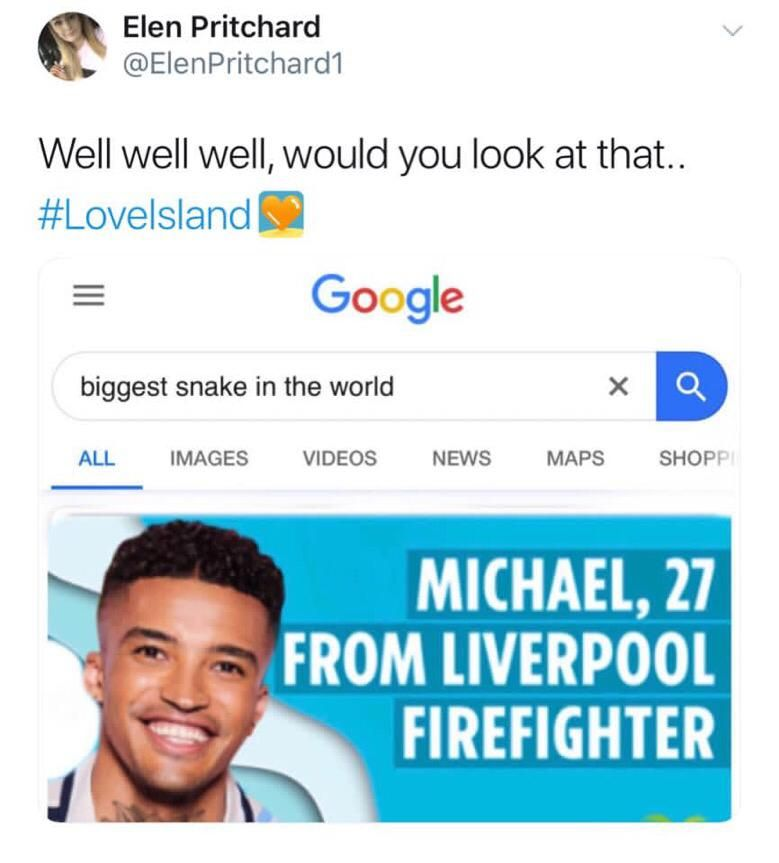Image may contain:  Love Island recoupling memes, Love Island, memes, Michael, tweets, reactions, savage, twitter, Text, Id Cards, Document, Person, Human