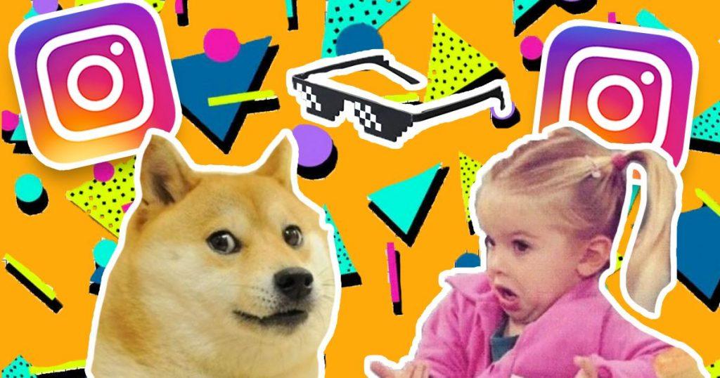 Image may contain: Animal, Canine, Mammal, Dog, Pet, Person, Human