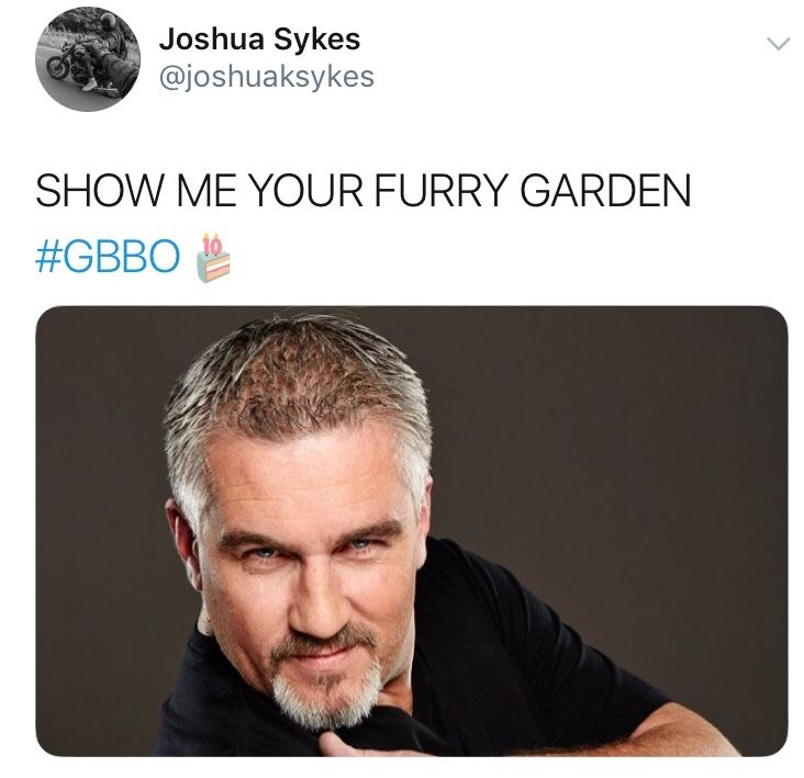 Image may contain:  Great British Bake Off memes, GBBO, Bake Off, meme, episode one, Great British Bake Off, furry garden, Paul Hollywood, reaction, twitter, tweet, Face, Text, Human, Person