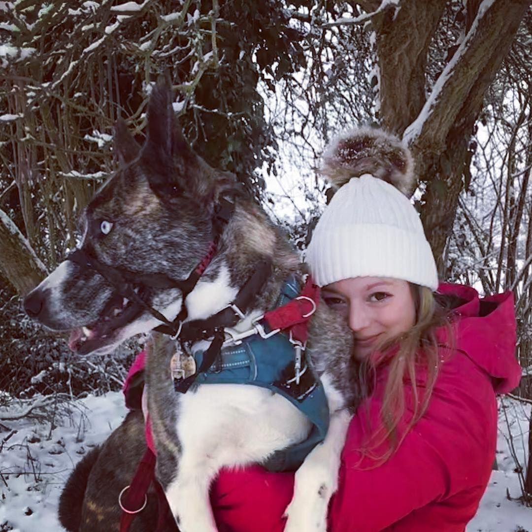 Image may contain: Great British Bake Off 2019, Rosie Brandreth-Poynter, Rosie, university, cast, contestants, lineup, Instagram, GBBO, Bake Off, 2019, start date, Channel 4, Snow, Nature, Ice, Outdoors, Clothing, Apparel, Animal, Pet, Mammal, Canine, Dog, Husky, Person, Human