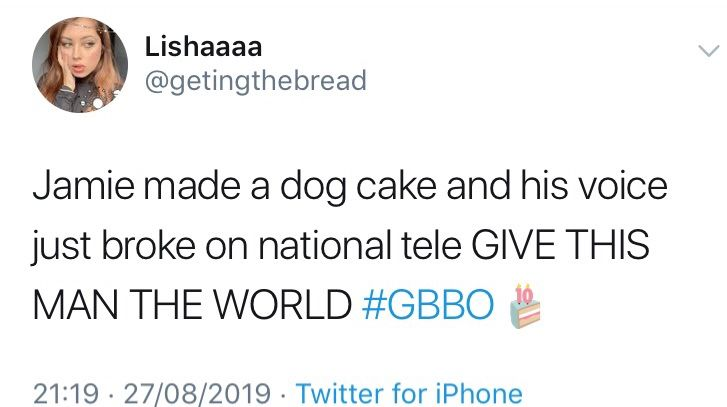 Image may contain:  Great British Bake Off memes, GBBO, Bake Off, meme, episode one, Great British Bake Off, Jamie, cake, dog, tweet, Word, Text, Human, Person