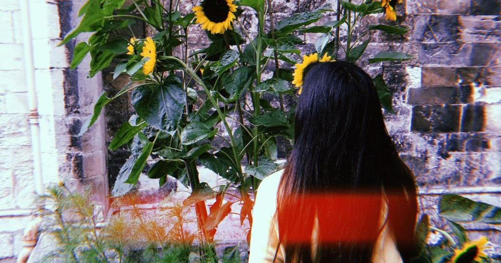Image may contain: Sunflower, Vegetation, Flower, Blossom, Hair, Plant, Human, Person