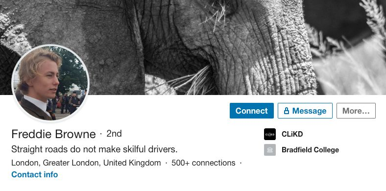 Image may contain: Elephant, Mammal, Wildlife, Animal, Human, Person