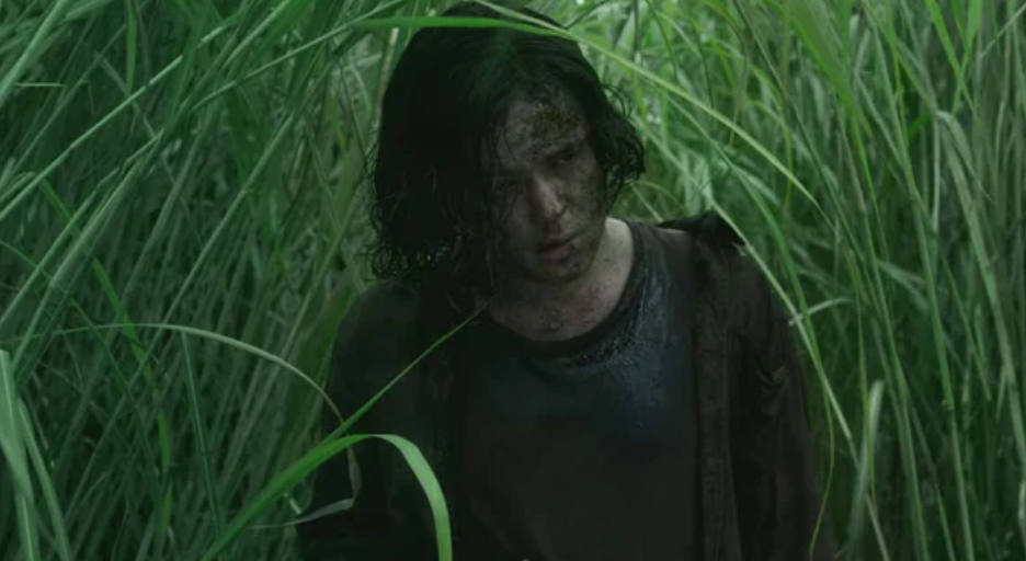 In the Tall Grass, Netflix, film, horror, thriller, plot, questions, confusing, spoilers, ending, Travis