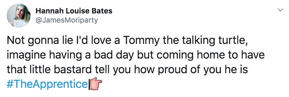 The Apprentice, Thomas Skinner, memes, candidates, reaction, twitter, funny, meme, Tommy, Tom, Turtle, last night, 2019, contestants