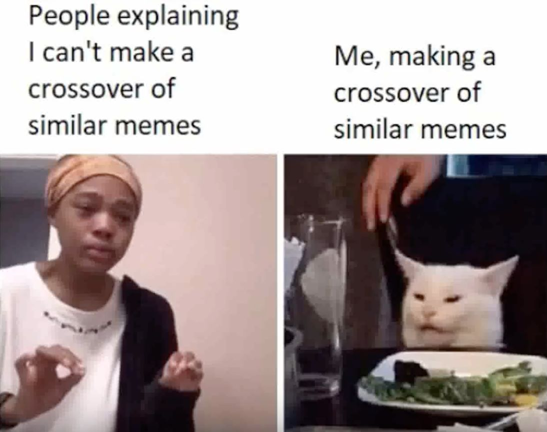 Image may contain: best woman yelling at cat memes, woman yelling at cat meme, cat, memes, best, funniest, examples, tweet, Twitter, reaction, Animal, Cat, Pet, Mammal, Face, Person, Human