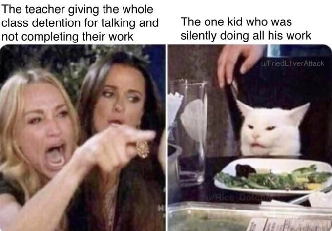 Image may contain: best woman yelling at cat memes, woman yelling at cat meme, cat, memes, best, funniest, examples, tweet, Twitter, reaction, Dating, Pet, Cat, Animal, Mammal, Female, Person, Face, Human