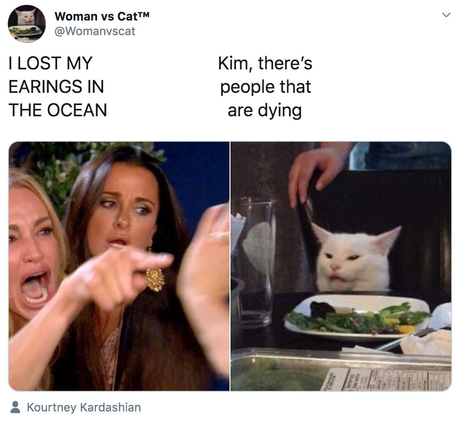 Image may contain: best woman yelling at cat memes, woman yelling at cat meme, cat, memes, best, funniest, examples, tweet, Twitter, reaction, Face, Pet, Animal, Mammal, Cat, Human, Person