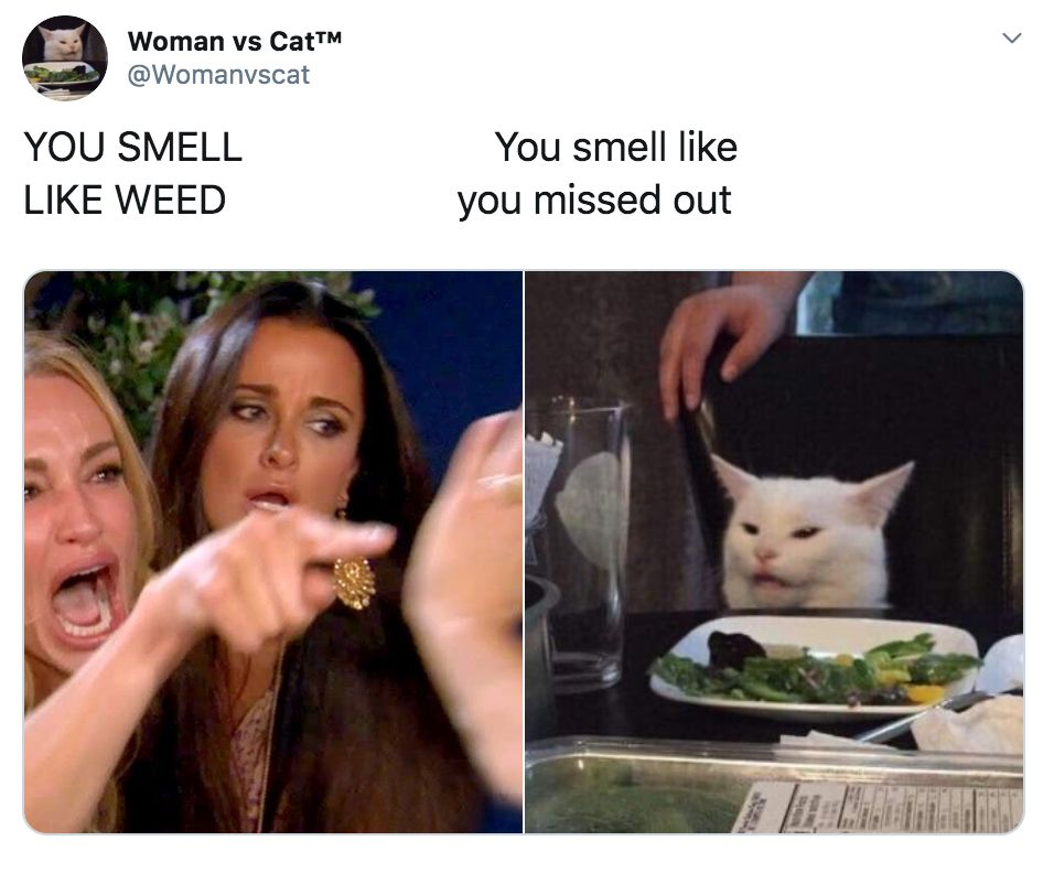 Image may contain: best woman yelling at cat memes, woman yelling at cat meme, cat, memes, best, funniest, examples, tweet, Twitter, reaction, Female, Animal, Pet, Mammal, Cat, Face, Human, Person