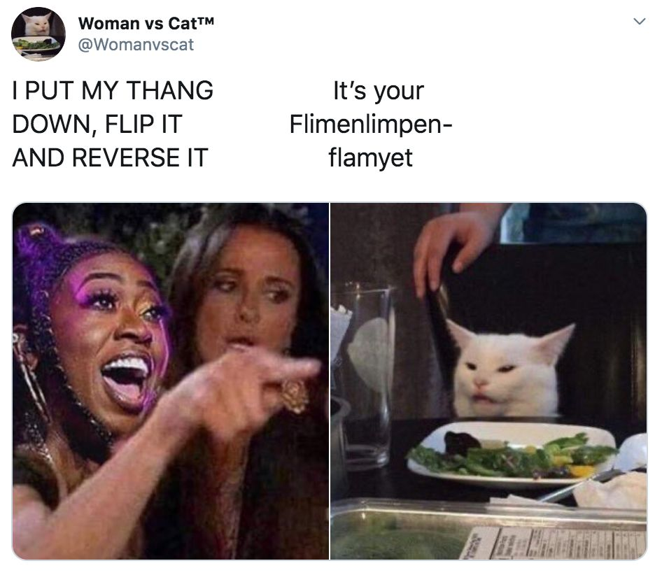 Image may contain: best woman yelling at cat memes, woman yelling at cat meme, cat, memes, best, funniest, examples, tweet, Twitter, reaction, Food, Meal, Face, Cat, Mammal, Pet, Animal, Person, Human