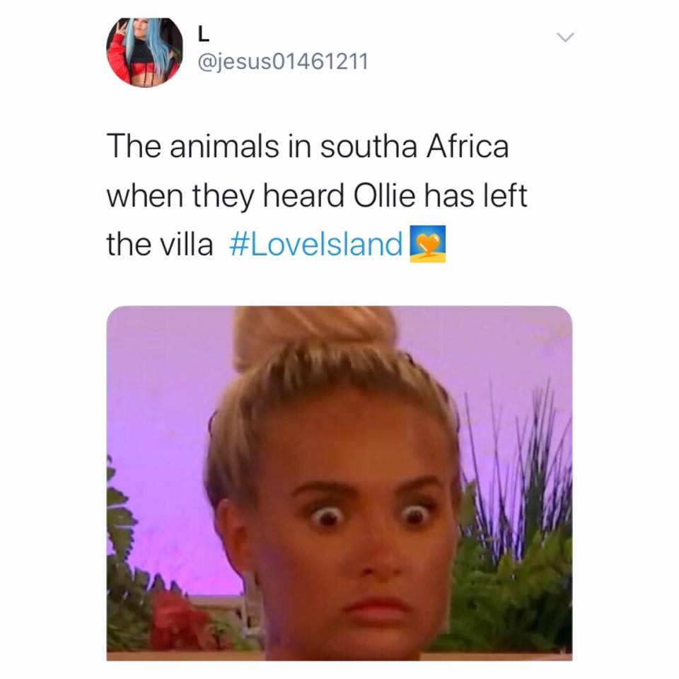 Love Island, memes, reactions, winter, meme, Ollie Williams, Ollie, quit, left, departure, exit, last night, Twitter, South Africa, Cape Town, winter, animals, gun, poaching, hunting, savage