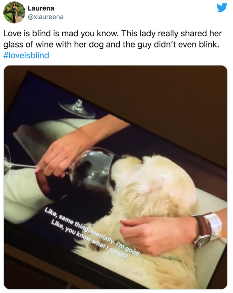 Jessica Love Is Blind, Jessica, Jess, memes, Love Is Blind, Netflix, reactions, Twitter, dog, wine, drunk, drinking