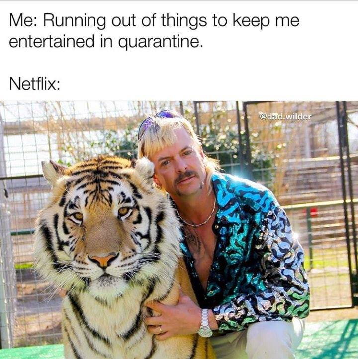 Tiger King memes: 41 of the craziest reactions to the Joe Exotic ...