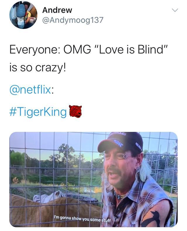 Tiger King, Joe Exotic, memes, meme, reaction, Twitter, funny, Netflix, series, Murder Mayhem and Madness, true crime, documentary,