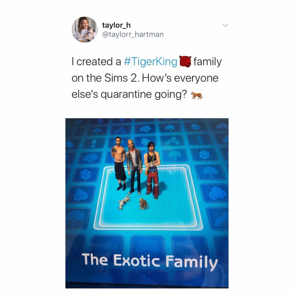 Tiger King, Netflix, memes, meme, reaction, Twitter, Joe Exotic, Carole Baskin, Sims