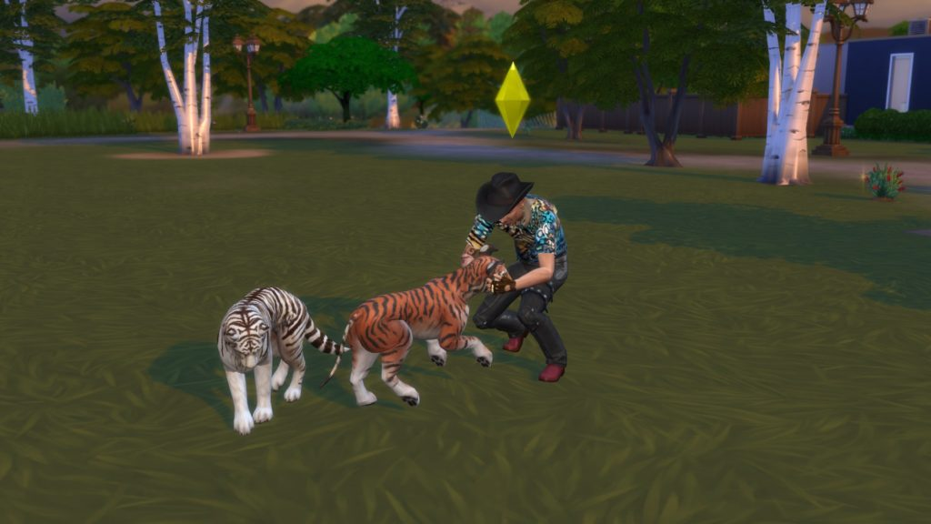 Tiger King, The Sims, Sims, game, Netflix, documentary, Joe Exotic, tigers, Carole Baskin, Travis, John Finlay