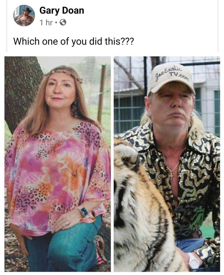 Tiger King, Netflix, memes, meme, reaction, Twitter, Joe Exotic, Carole Baskin, Donald Trump, Hillary Clinton